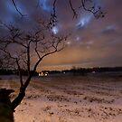 overcast by Daniel Wills