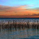 The quiet sunset by annalisa bianchetti