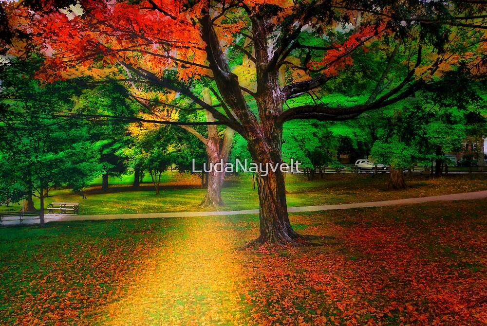 Brookline park at fall by LudaNayvelt