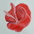 A Red, Red, Rose by lisavonbiela