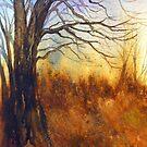 Dawn by Jacki Stokes