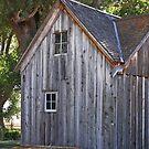 Old House by Julia Washburn