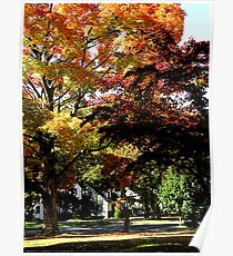 Suburban Autumn Poster