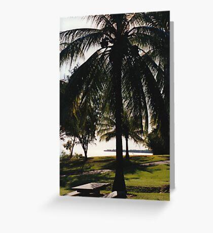 Coconut Palm Greeting Card