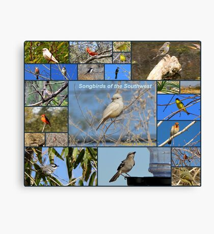 Songbirds of The Southwest ~ Collage Canvas Print