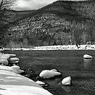 Esopus Creek by Jaime Hernandez
