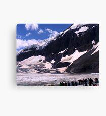 Columbian Icefields Canvas Print