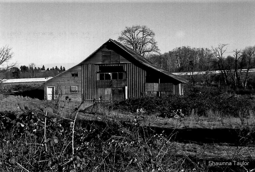 Broken Down Barn  by Shawnna Taylor