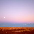 Dusk on the gibber plain by May-Le Ng