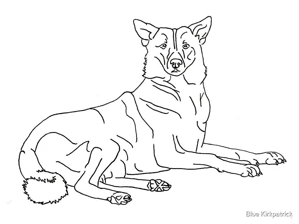 Canaan Dog By Blue Kirkpatrick