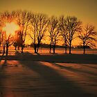 Sunset & Shadows  by lorilee