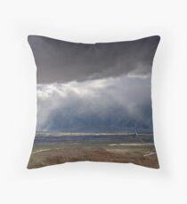 Desert Irrigation System Throw Pillow