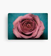 Altered colour Rose macro Canvas Print