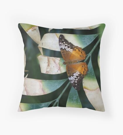 Painted Lady Throw Pillow