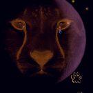 savannah tears by ponypal