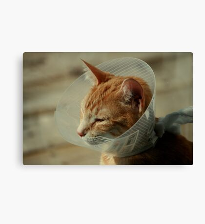 Get Well Soon Canvas Print