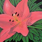 Painted Lilies Collection by Laura Dhir