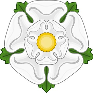 White Rose of Yorkshire by sweetsixty