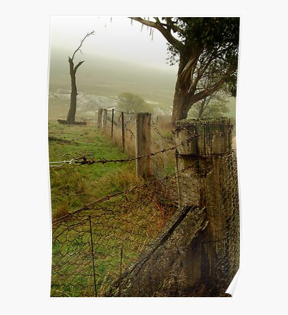 Wet Damp Cowbaw Morning, Macendon Ranges Poster