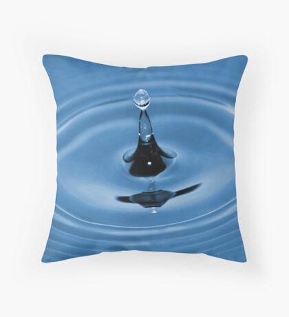Velvet Motion Throw Pillow
