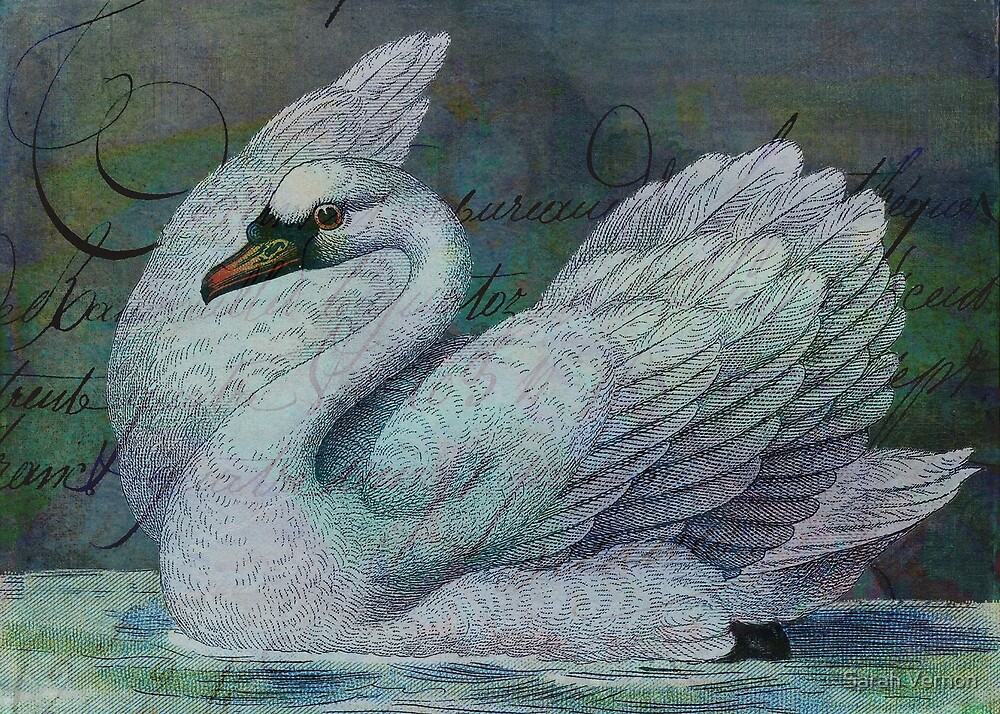 The Swan Also Rises by Sarah Vernon