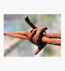 Barbed Photographic Print