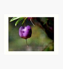 Purple Apple-Berry Art Print