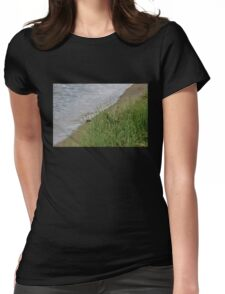 Grassy Beach Womens Fitted T-Shirt