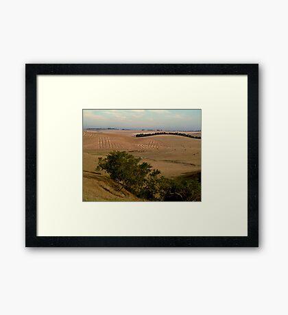 Barrabool Hills Farmlands Framed Print