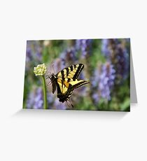 Butterfly Thoughts Greeting Card