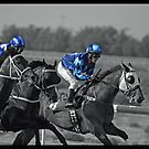 Race Series #1 by Jo McGowan
