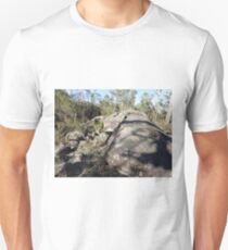 Serpentine Rock Unisex T-Shirt