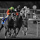 Race Series #7 by Jo McGowan