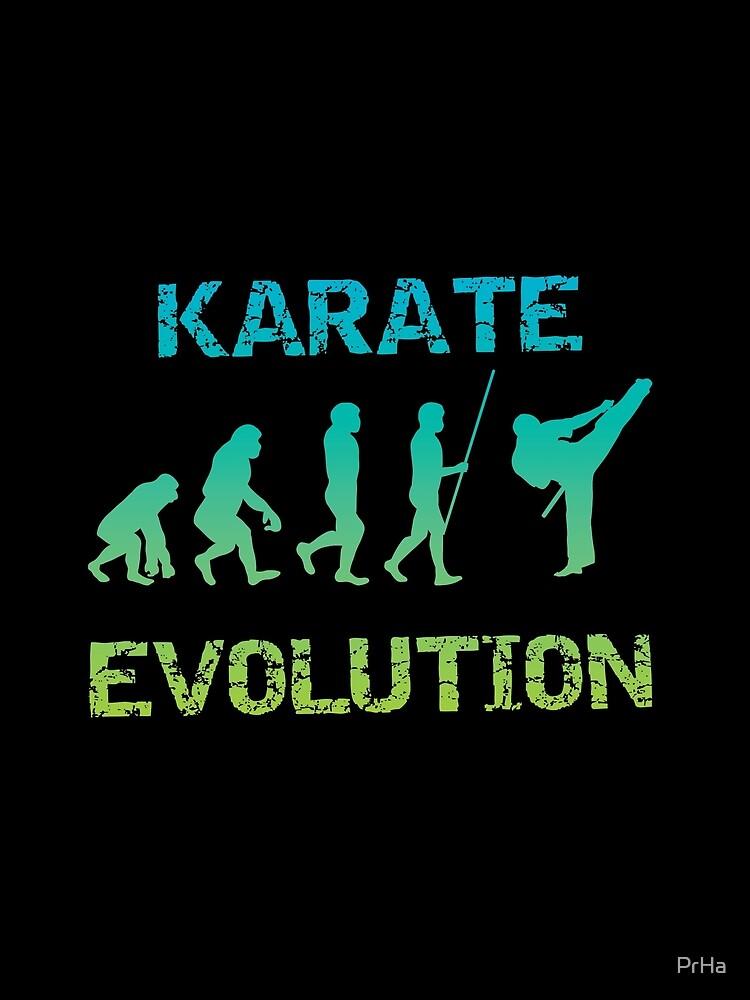Karate Evolution Kampfsport von PrHa