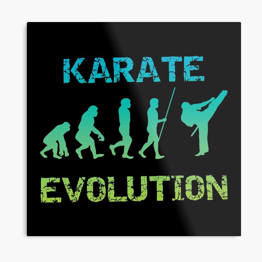 Karate Evolution Kampfsport Metallbild