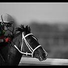 Race Series #8 by Jo McGowan