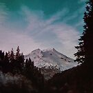 Pacific Northwest Mountain Magic by Leah Flores