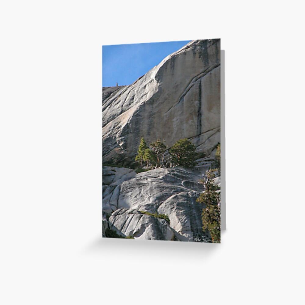 Dwarf Trees Above Tenaya Greeting Card