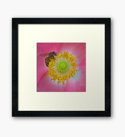 Close to My Heart Framed Print