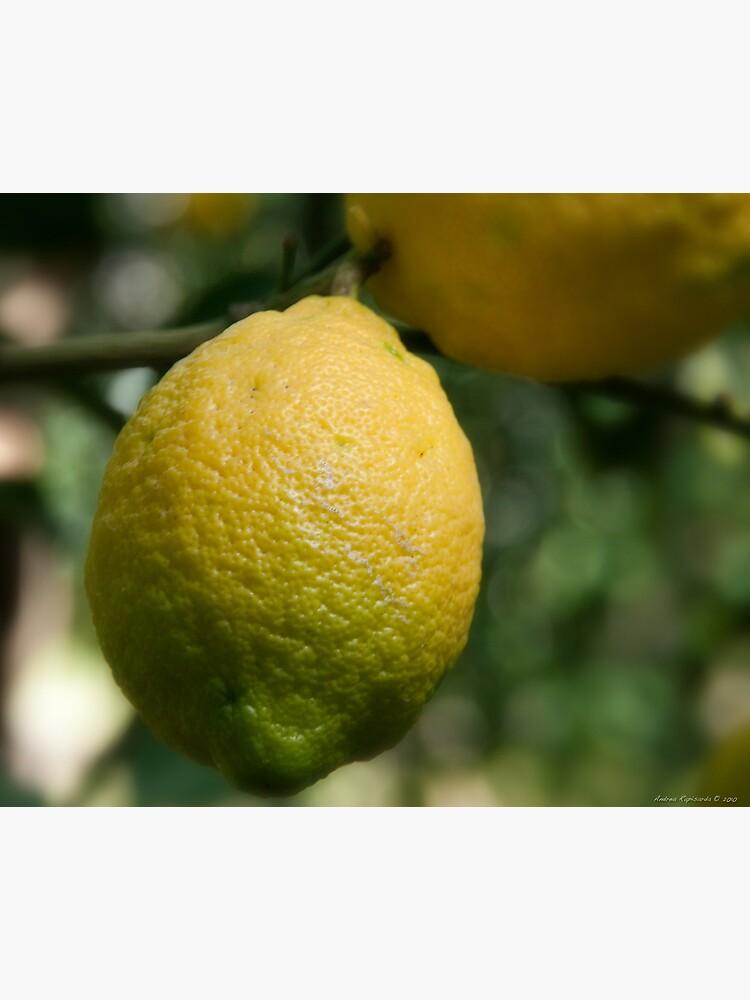Uno sfumato al  limone by rapis60
