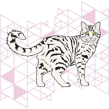 Tabby Cat Power by MichelleEatough