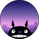 Totoro - Disk by mavisshelton