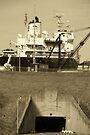 Eisenhower Lock by John Schneider