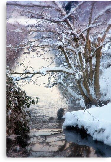 Heron Winter Scene by Tracy Riddell