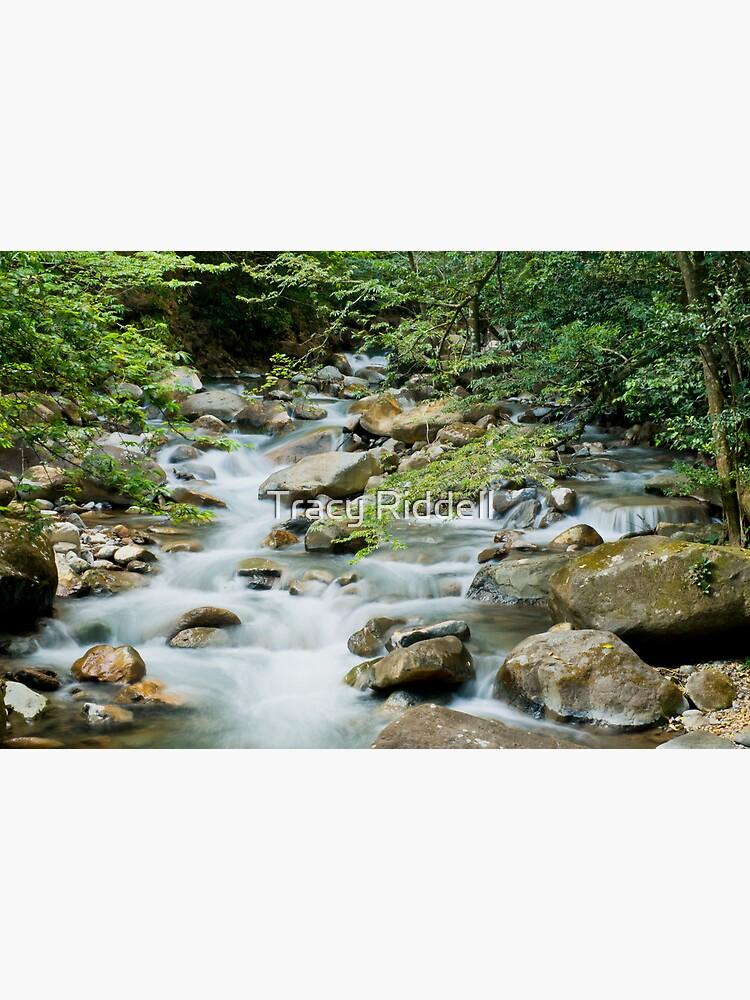 River in Ricon de la Vieja by taos