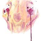 Mother Nature - Lynx Skull by Rachelle Skinner