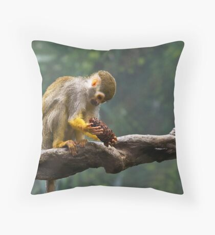 What is this Throw Pillow