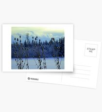 """Teasles & Clouds featured in """"Cees Fun Artsy Friends"""" Postcards"""