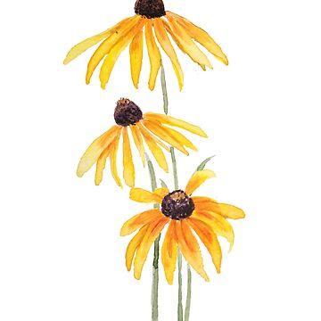 3 margaritas gloriosa amarilla acuarela de ColorandColor