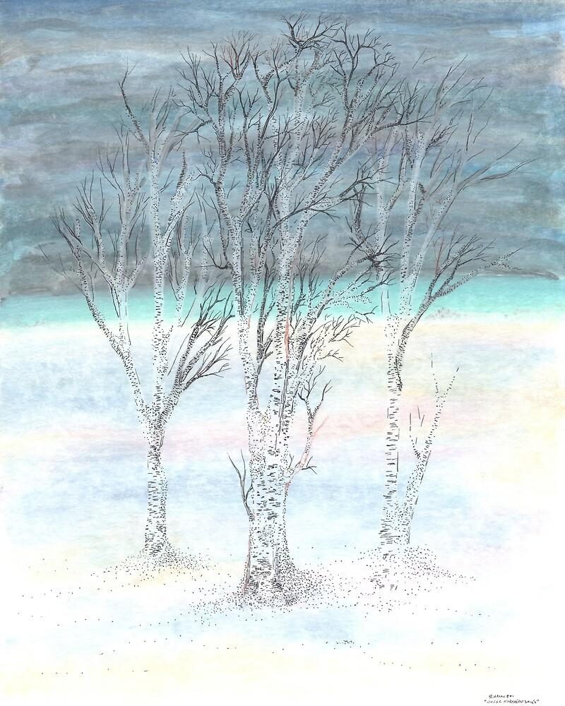 Under Northern Skies by Regina Valluzzi